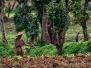 Východná Barma