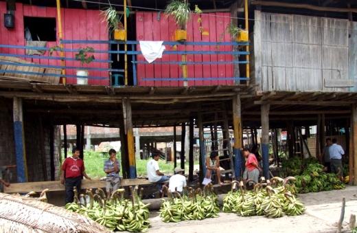 Trh v Iquitos header