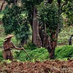 Východná Barma – fotogaléria