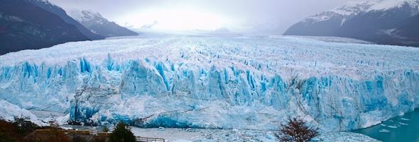 Calafate a ľadovec Perito Moreno - Patagónia, Argentína