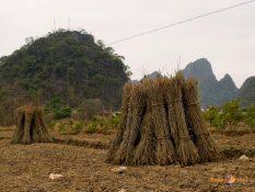 Juhočínsky vidiek