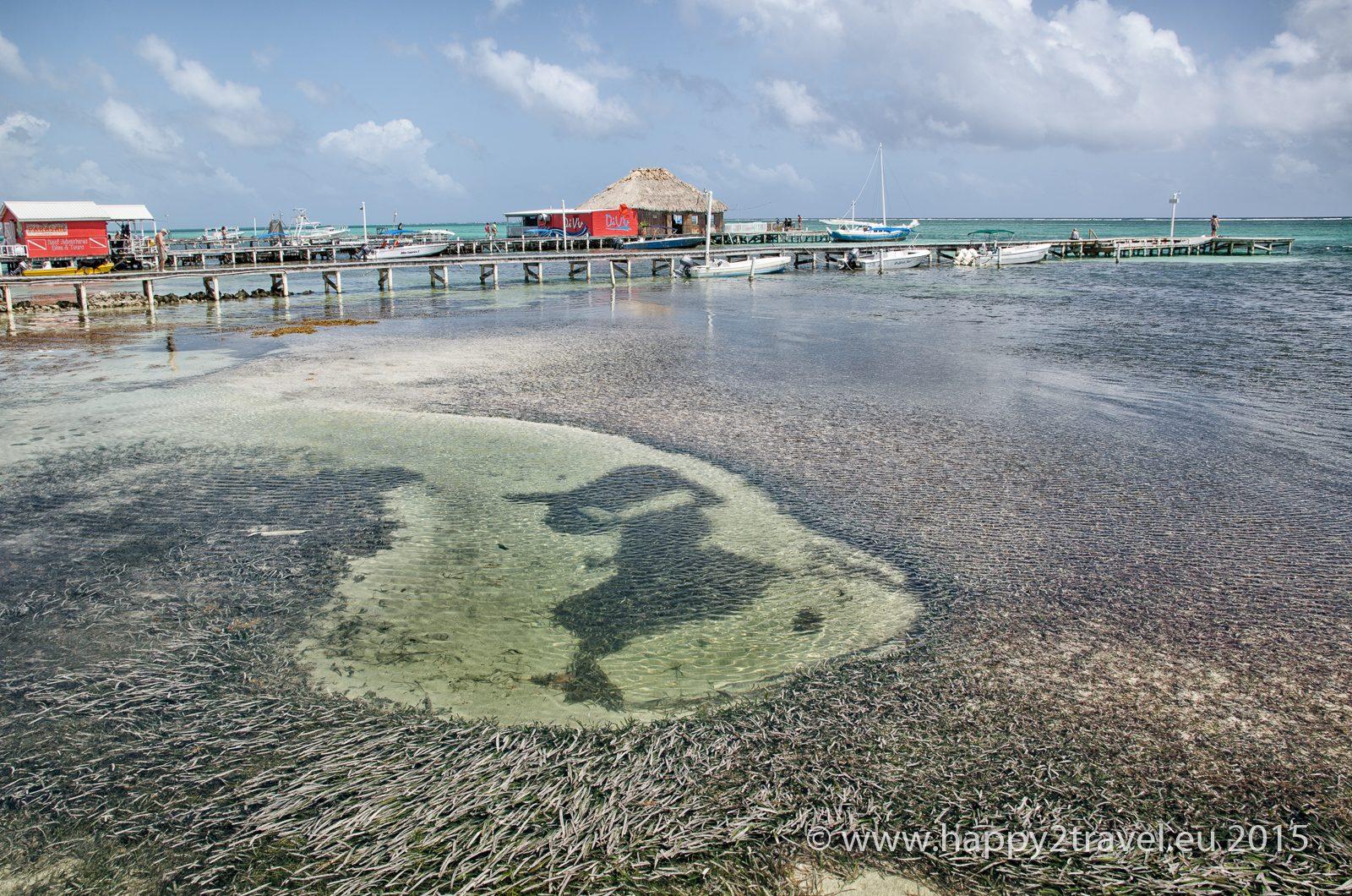 Život ako v raji: ostrov Karola Mella