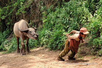 Domorodý chlapec v horách východnej Barmy