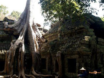 Svätyňa Ta Prohm v Angkor Wat, Kambodža. Úžasné, neopakovateľné miesto