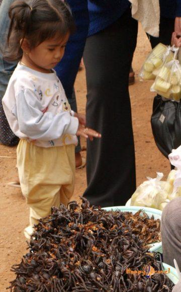 Na miestnom trhu: vyprážané tarantule