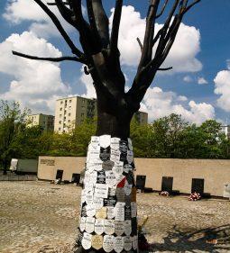 Väzenie Gestapa Pawiak, pamätný strom obetí. V roku 2010 strom zničili v deň fašistickej demonštrácie.
