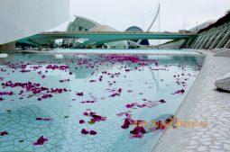 Park vied a umení vo Valencii